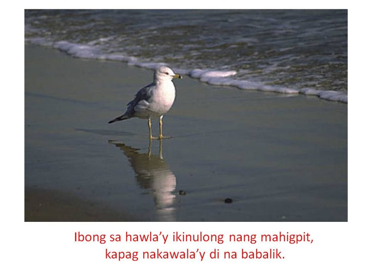 10 example of filipino proverbs