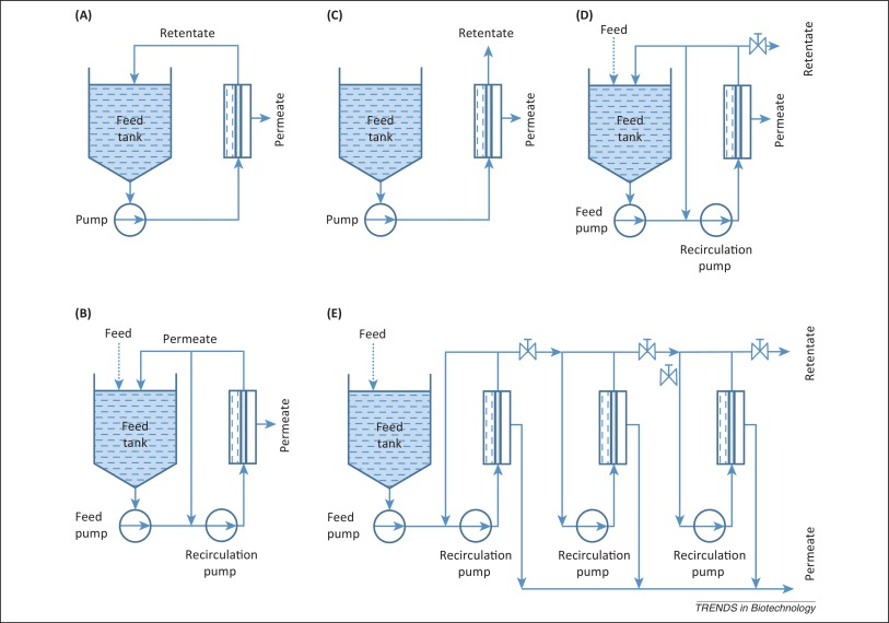 is inverted fermentation tube example of batch culture